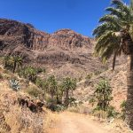 PuntaApunta, este año en Canarias y patrocinada por Touratech